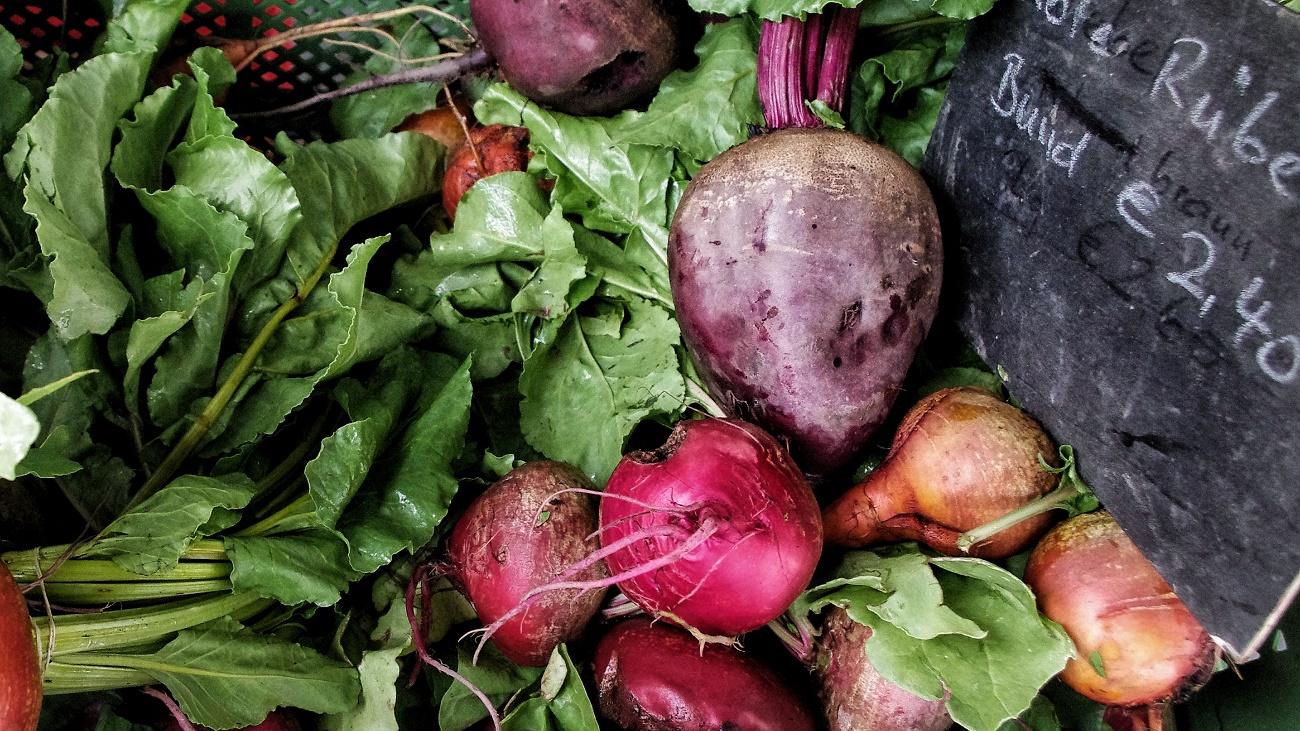 nachhaltige und klimaschonende Küche mit vegetarischen und veganen Rezepten für jede Gelegenheit