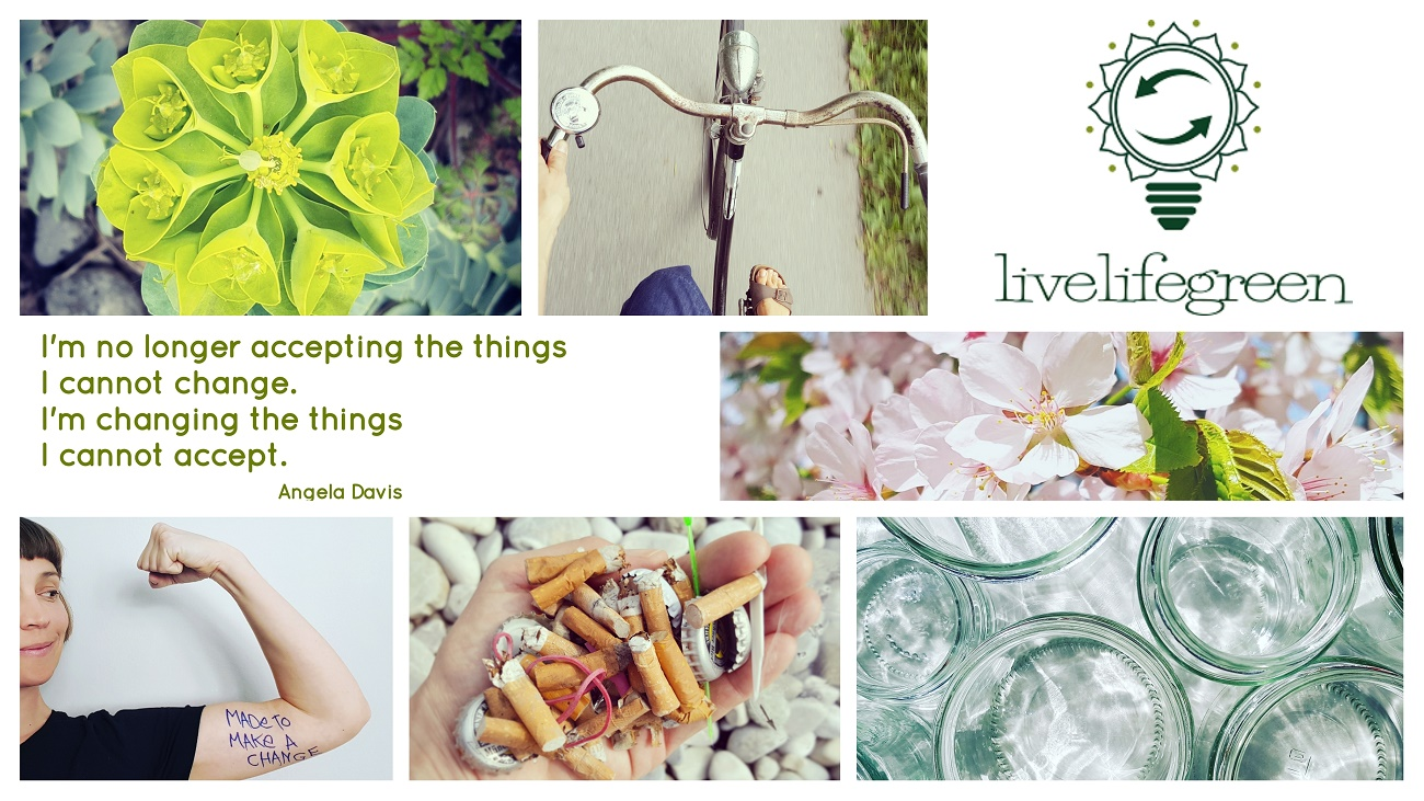 Mit dem Nachhaltigkeitsblog livelifegreen den Alltag verändern - Mit einfachen Tipps nachhaltig leben